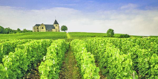 Circuito Champagne e Alsácia