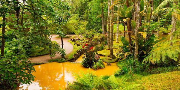 Parque Terra Nostra na Ilha de S.Miguel, Açores